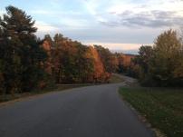 NY Fall