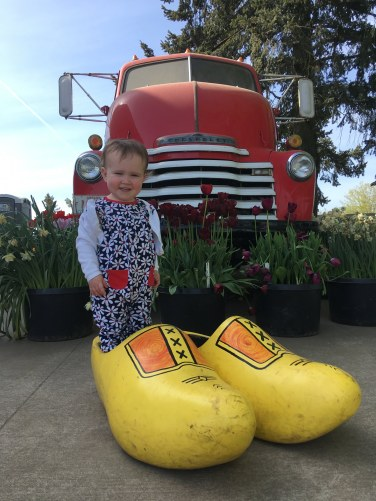 more wooden shoe